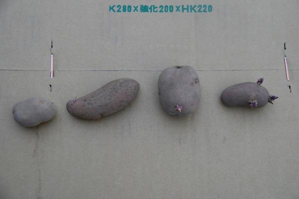 20091002dsc_4345